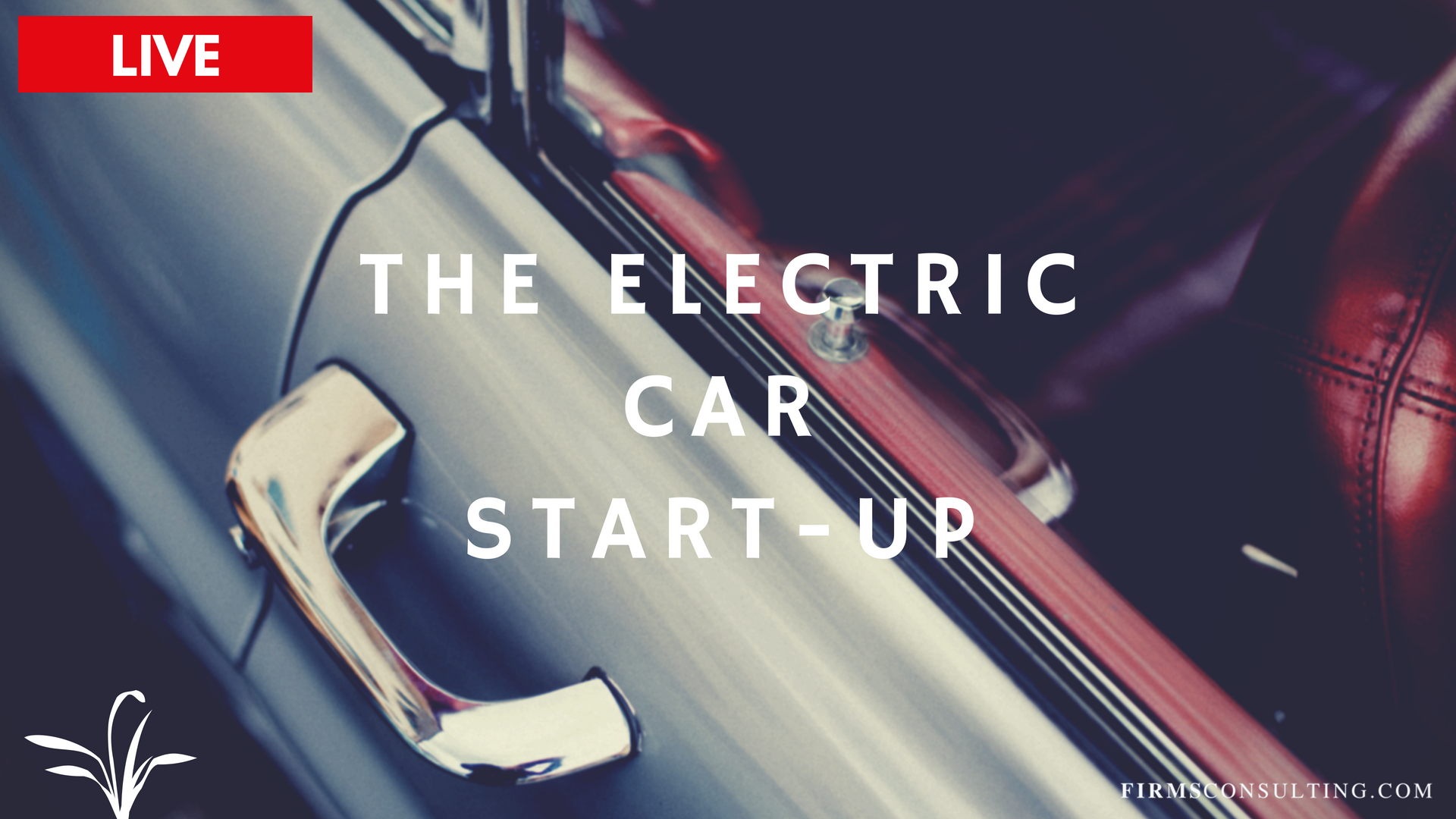 Poster for the Electric Car Startup Program
